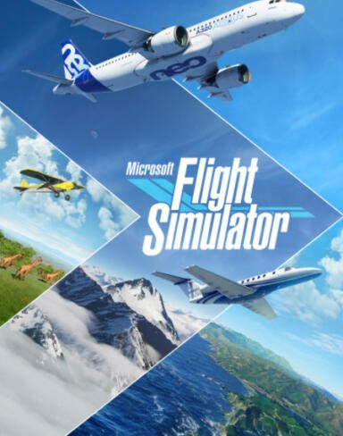 Microsoft Flight Simulator download
